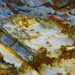 Tasmania Wilderness Old Fossils of Rocks Exposed